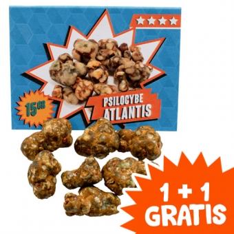 Atlantis Magic Truffels kopen