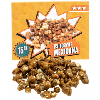 Mexicana Magic Truffels Kopen